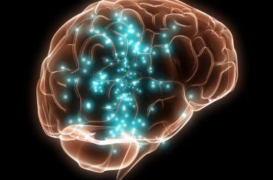 خمس حقائق مذهلة عن الدماغ - الدماغ هو العضو الأعقد في جسم الإنسان - التنفس ووظائف الأعضاء والحركة - التفكير والمشاعر والتصرفات والذكريات - أهمية دماغنا