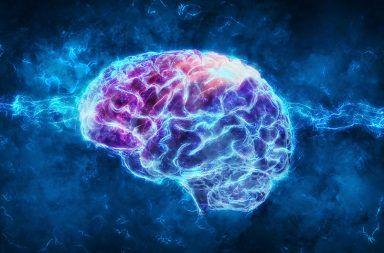 اعتلال الدماغ الأسباب والأعراض والتشخيص والعلاج بنية الدماغ التغير في الحالة العقلية للمريض الاعتلال الدماغي أمراض البريونات المخ