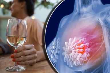 شرب الكحول و خطر الإصابة بسرطان الثدي - أظهرت الأبحاث أن شرب الكحول يُزيد من خطر الإصابة بسرطان الثدي، فكيف تخفف من خطر الإصابة؟