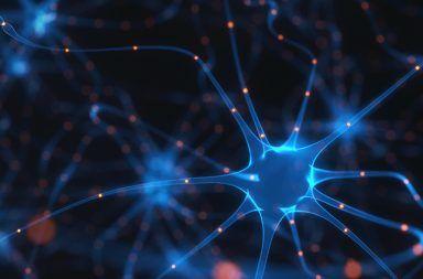 اعتلال عصبي التهابي متعدد مزمن مزيل للمايِلين التهاب الأعصاب الحاد المزيل للنخاعين الشكل المزمن من متلازمة غيلان باريه القدرة على الإحساس والحركة