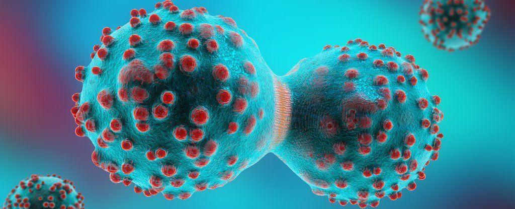قد يبدأ السرطان من خلية واحدة فقط، لذلك علينا استهدافها وبأسرع وقت ممكن