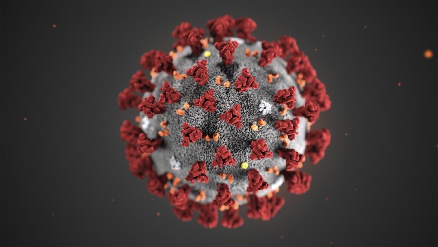 قد يتحول فيروس كورونا الجديد إلى مرض موسمي مستوطن يعاود الظهور كل سنة!