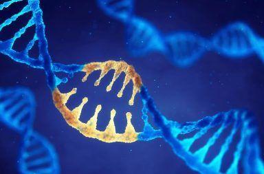 طول العمر جينات العوامل الأشخاص