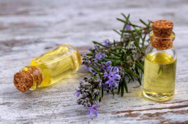 هل يمكن استخدام زيت إكليل الجبل لنمو الشعر - النباتات الخشبية المعمرة - الطبخ والتنظيف والتجميل والصحة وأغراض كثيرة أخرى - علاج منزلي