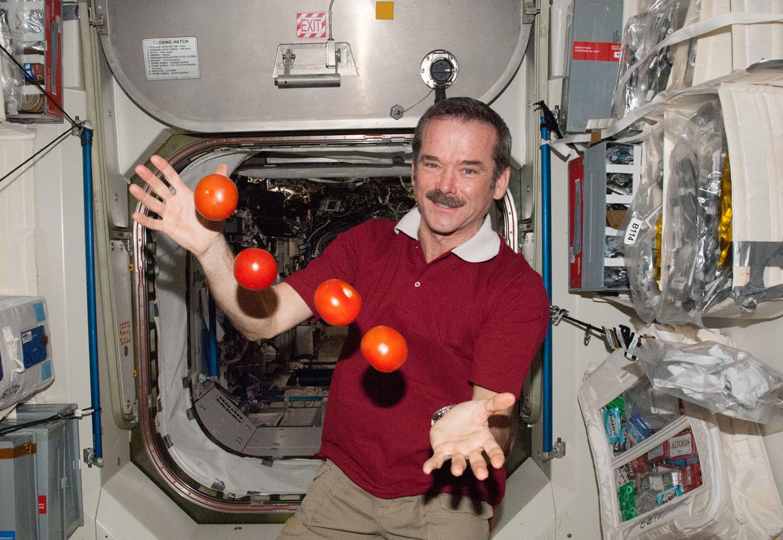 كيف يتناول رواد الفضاء طعامهم خلال رحلاتهم الفضائية؟