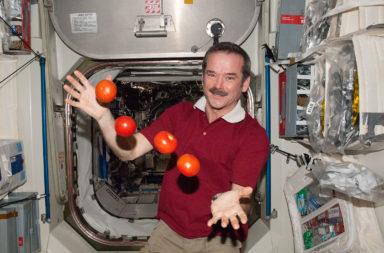 كيف يتناول رواد الفضاء طعامهم خلال رحلاتهم الفضائية؟ ما هي الأطعمة التي يتناولها رواد الفضاء على متن المكوك الفضائي؟ طعام رواد الفضاء