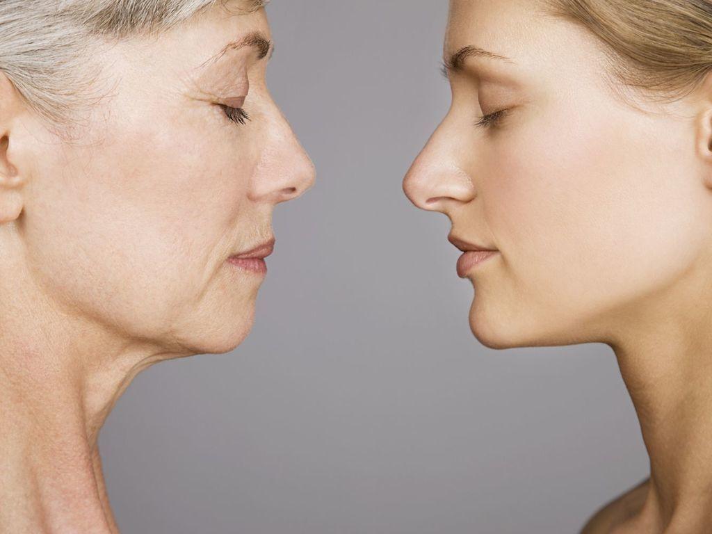ما العلاقة بين الشيخوخة وإنجاب عدد أكبر من الأطفال؟