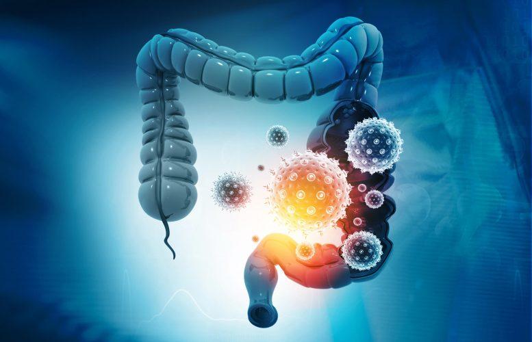 ما هو الميكروبيوم المعوي؟ وما تأثيره على صحتنا؟