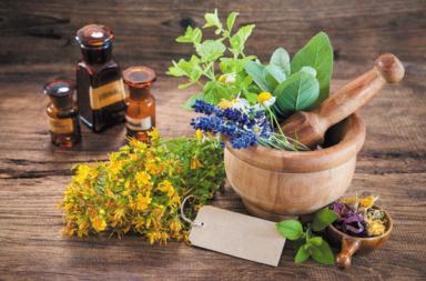 معلومات مهمة عن المكملات الغذائية العشبية - ما هي استخدامات العلاجات العشبية وهل لها آثار جانبية؟ مجموعة من الأعشاب ذات الاستخدام العلاجي
