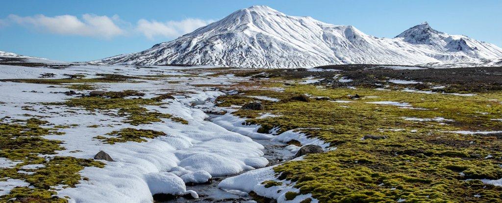 العلماء يحذرون: ارتفاع درجات الحرارة قد يسبب انبعاث كميات كبيرة من ثاني أكسيد الكربون - الغاز المنبعث من التربة، المتسرب إلى الغلاف الجوي - الانبعاثات