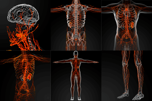 التهاب الأوعية اللمفاوية: الأسباب والأعراض والتشخيص والعلاج