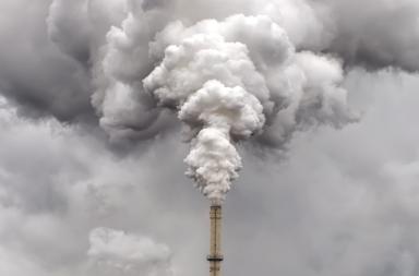 هل يمكننا سحب كمية كربون كافية من الغلاف الجوي لوقف التغير المناخي - ثاني أكسيد الكربون - الممتصات الطبيعية للكربون - الانبعاثات