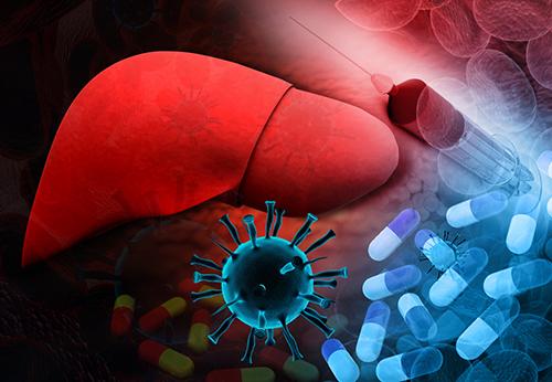 التهاب الكبد B: الأسباب والأعراض والتشخيص والعلاج