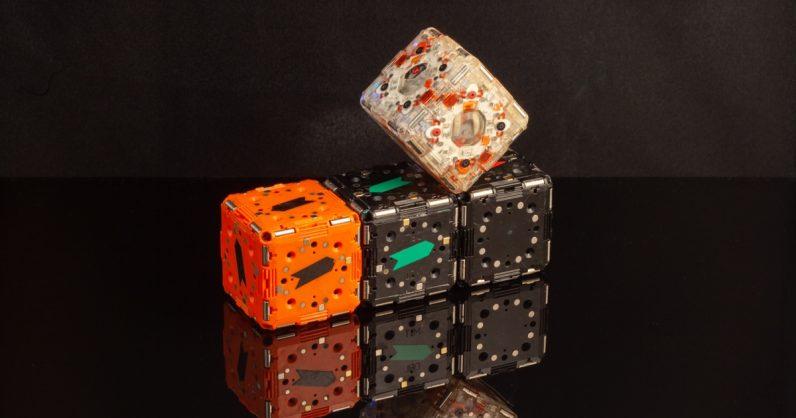 تصميم مجموعات من الروبوتات صغيرة تعمل على شكل وحدة مثل السرب