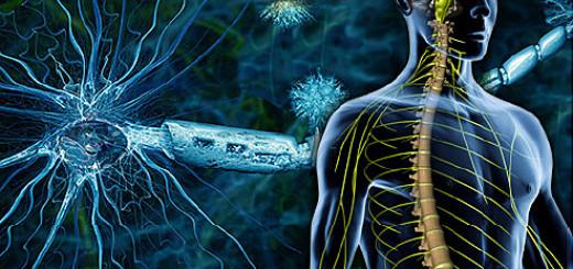 التصلب اللويحي: ما هو، ما أعراضه وأسبابه وما مدى خطورته