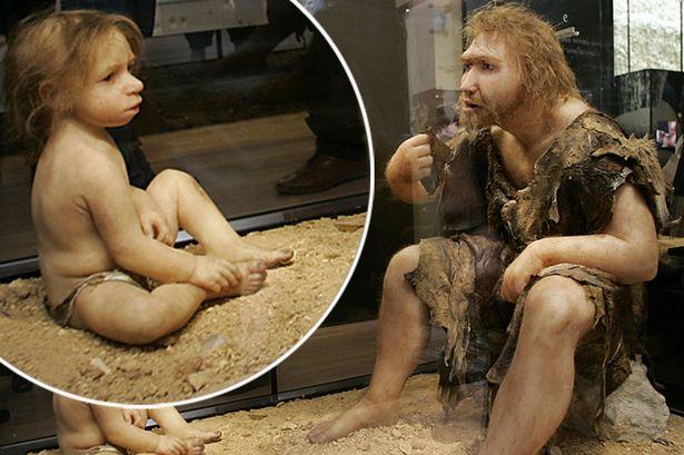 نشأ أطفال النياندرتال وفطموا بطريقة مماثلة للبشر الحاليين