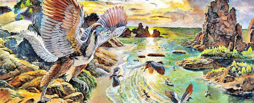 ديناصور طائر جديد يوحي بأن الأركيوبتركس هو الحلقة المفقودة للطيور