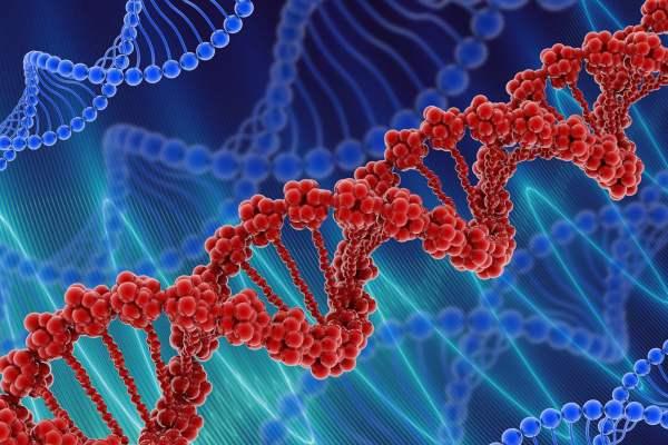 علماء الفيزياء يؤكدون وجود طبقة ثانية من المعلومات مخفية في ال DNA البشري