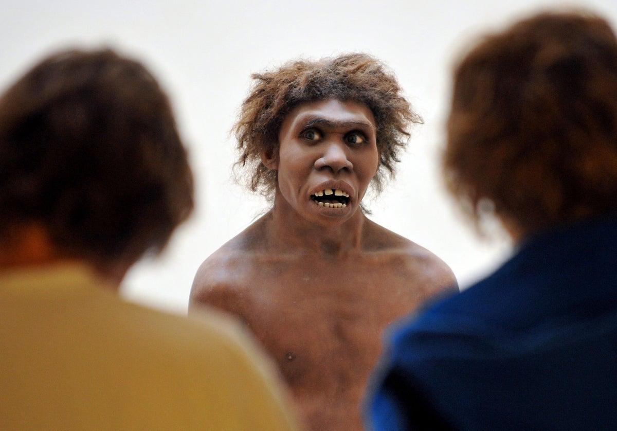 اكتشاف هائل: إنسان النياندرتال كان ينطق بكلمات مشابهة للإنسان الحالي