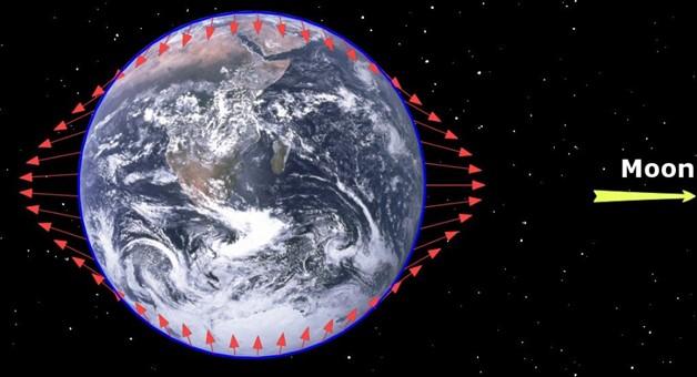 تُصوّر الأسهم الحمراء انجذاب وامتداد مياه محيطات الأرض عند حدوث المد والجزر