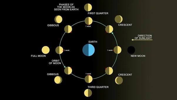 يوضح هذا الرسم أطوار القمر المختلفة.