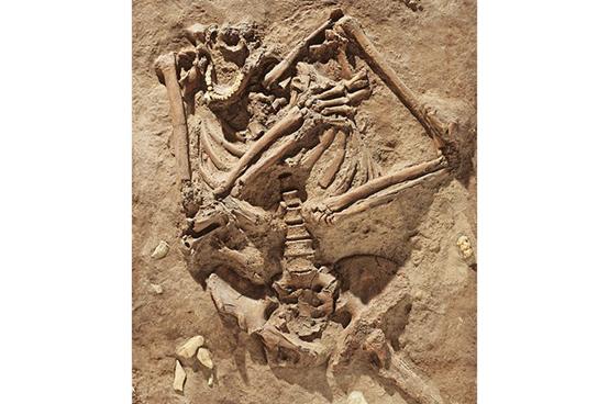 عُثر على إنسان النياندرتال مدفونًا في كهف كيبارا، وعمره نحو 60 ألف سنة. يدل موقع الطرف العلوي على أن الجثة طُمرت في الأرض قبل أن تتصلب، أي بعد الموت بفترة قصيرة. والغريب اختفاء رأس الجثة، ما يدل على أنه انتُزع بعد الدفن، ولم يجد العلماء تفسيرًا لهذا الأمر