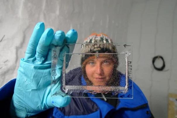 مؤلفة الدراسة إيميلي كابرون تحمل قطعة رقيقة مصقولة من القلب الجليدي