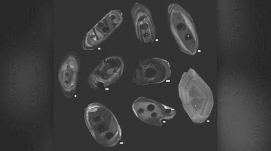 صورة: بلورات الزركون التي صُوِّرت بواسطة كاثودولومينسينس، وهي طريقة تسمح للعلماء بتصوير البلورات بوساطة مجهر إلكتروني متخصص للمسح الضوئي. لاحظ الدوائر المظلمة على الزركونات، تلك هي التجاويف التي تركها الليزر الذي اسُتخدِمَ لتحديد عمر وكيمياء الزركونات. حقوق الصورة: مايكل أكرسون، معهد سميثسونيان.