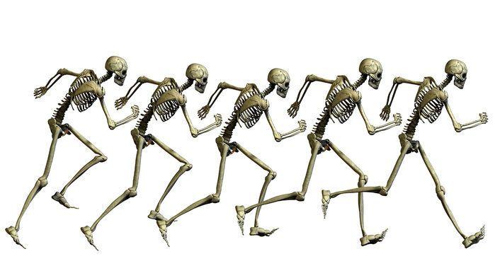 العظام تفرز هرمون يساعدنا على الهروب من الخطر