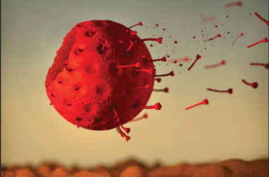 متى ستنتهي جائحة فيروس كورونا - موعد انتهاء جائحة كوفيد-19 - الفناء النهائي للعامل المسبب للوباء - فعالية التباعد الاجتماعي في الحد من انتشار فيروس كوفيد-19