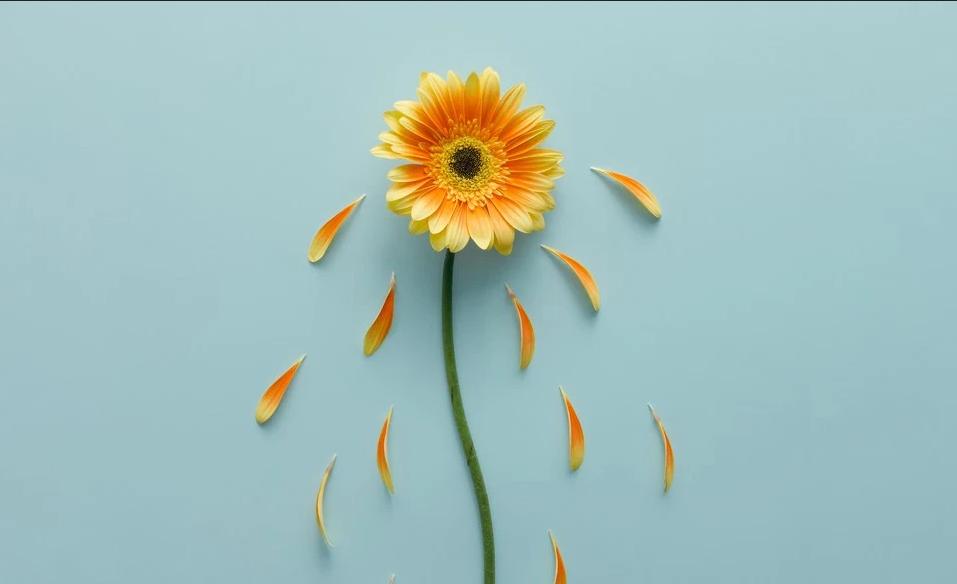 الاضطراب العاطفي الموسمي في فصل الصيف: الأسباب والعلاج