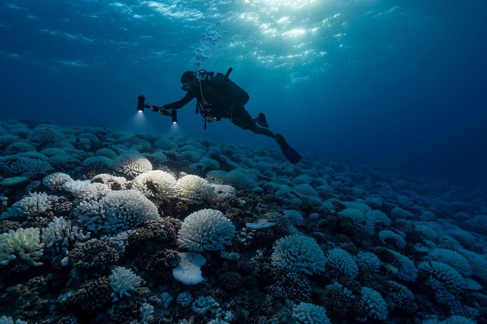 تباطؤ حركة التيارات المناخية قد يضع المحيط الأطلسي على حافة الدمار