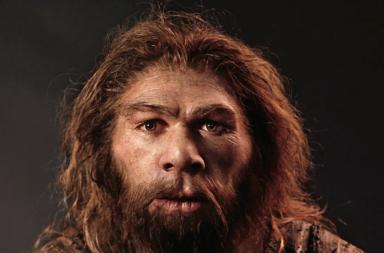 هل كان إنسان النياندرتال ذكيًا؟ وما سبب انقراضه؟ - الفروق بين النياندرتال والإنسان العاقل - هل استطاع النياندرتال الكلام؟