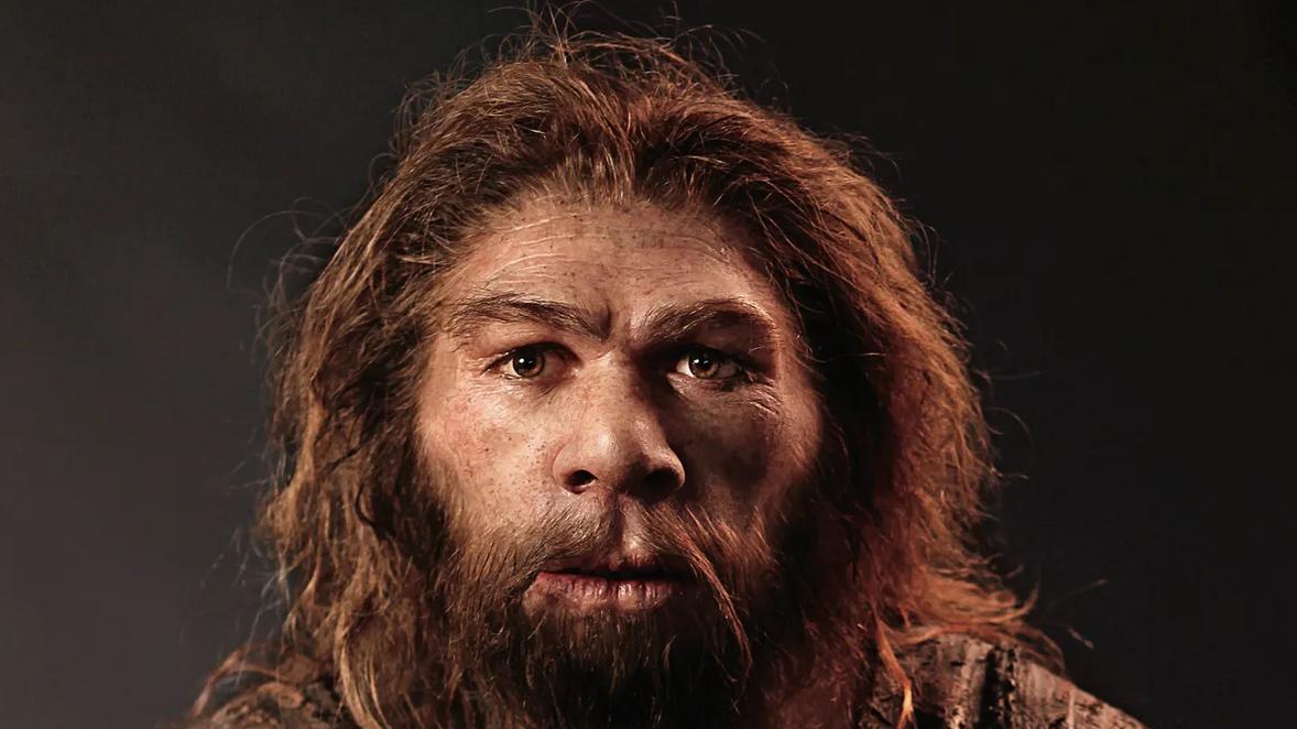 هل كان إنسان النياندرتال ذكيًا؟ وما سبب انقراضه؟