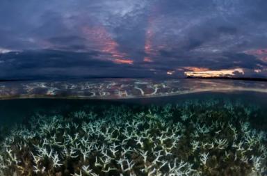 الاحتباس الحراري يغير منظومة المحيطات - إحداث التغير المناخي تغيرات كبيرة وجوهرية في استقرار المحيطات بسرعة أكبر مما كان مفترضًا