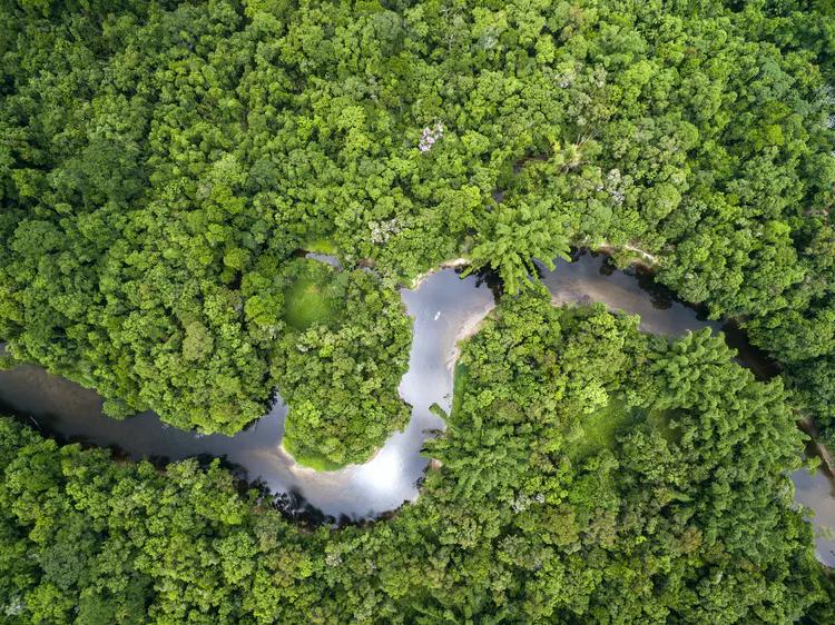 فقط ثلاثة بالمئة من النظم البيئية للأرض ما تزال سليمة.. لكننا لم نفقدها تمامًا بعد
