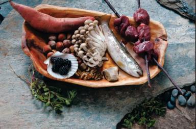 أين كان موقعنا في النظام البيئي قبل مليوني سنة؟ - كيف كان النظام الغذائي الذي اتبعه البشر القدماء منذ ملوني سنة؟ - حمية العصر الحجري