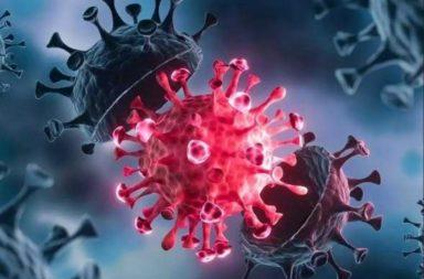كشفت نتئاح إحدى الأبحاث عن وقوع جائحة فيروس كورونا منذ 20,000 سنة مضت في شرق آسيا - هذه ليست أول مرة تتفشى فيها جائحة فيروس كورونا