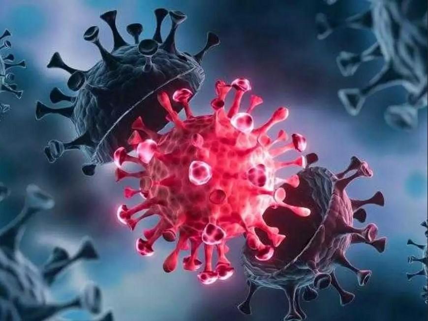 هذه ليست أول جائحة تتفشى بسبب فيروس كورونا