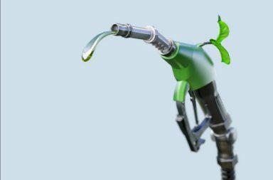 ما هو الوقود الحيوي وهل يمكن الاعتماد عليه بدلًا من الوقود الأحفوري؟ ما هي مجالات استخدام الوقود الحيوي ومن أين يتم استخراجه؟