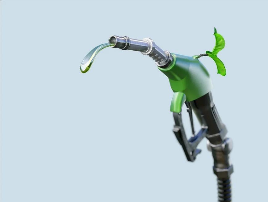 الوقود الحيوي: مصدر واعد للطاقة الصديقة للبيئة