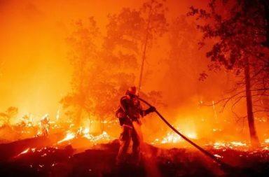 حرائق الغابات بين الماضي والحاضر: ماذا تغير؟ - الحرائق التي حصلت في غرب الولايات المتحدة وأستراليا، لماذا حصلت وما نتائجها؟