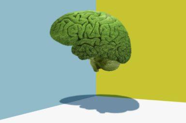 تؤثر الإصابة المعتدلة بفيروس كوفيد-19 على الدماغ ومن غير المعروف مدى استمراريتها - تأثيرات فيروس كوفيد-19 على الجسم والدماغ