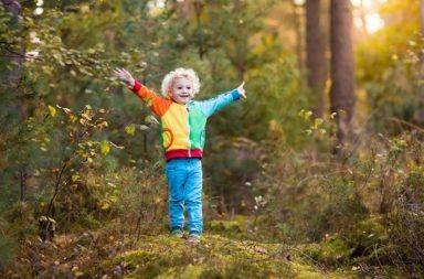 بناء غابات خاصة بدور الحضانة في فنلندا غير أنظمة المناعة عند الأطفال - دور لعب الأطفال في المساحات الخضراء وركام الغطاء النباتي للغابات الصغيرة