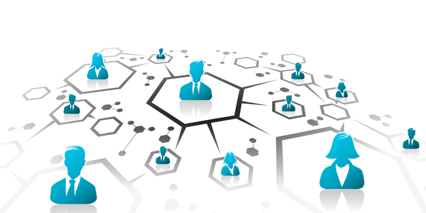 ما هو تأثير الشبكة ؟