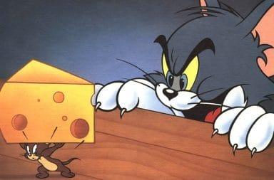 الفئران تحب الجبنة: حقيقة أم خرافة؟