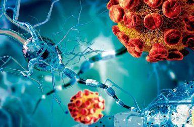 التهاب السحايا الفيروسي: الأسباب والأعراض والتشخيص التهاب في الأنسجة التي تحيط وتحمي أعضاء الجهاز العصبي المركزي السائل الدماغي الشوكي