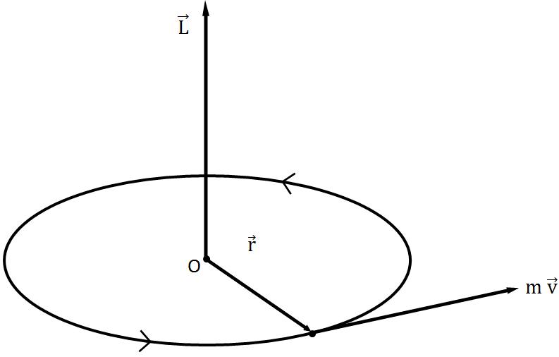 الزخم الزاوي في الفيزياء