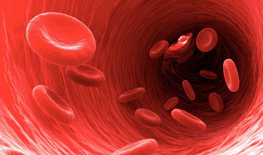 دليلك لسرطان الدم