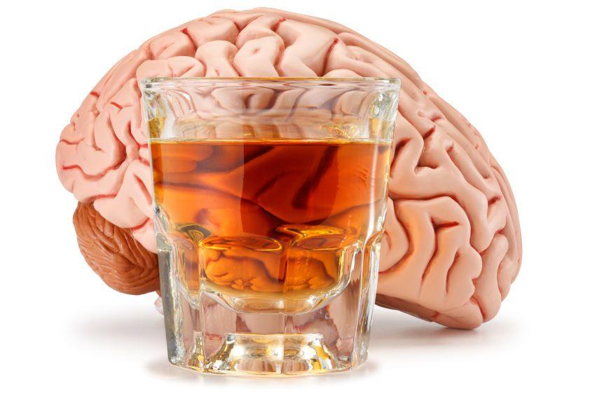 هل ينظف الكحول دماغك حقًا؟